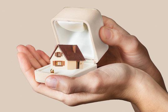 house inside ring box