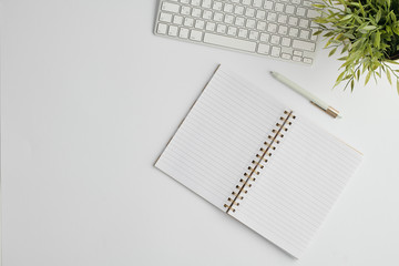 Flat layout with pen, computer keypad, open notebook with blank pages and plant