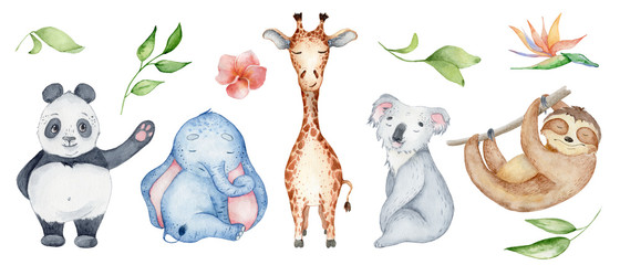 Watercolor animals character collection. Panda, sloth, giraffe, koala, elephant