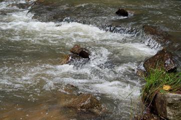 Papiers peints Rivière de la forêt Picturesque view of the beautiful mountain cold river Katun, Altai territory of Russia, flowing through the rocks. Summer landscape.