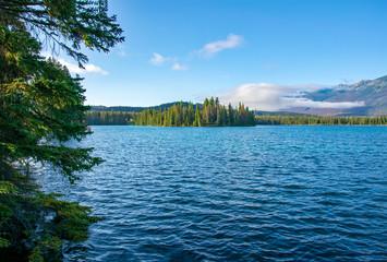 Mildred Lake Jasper