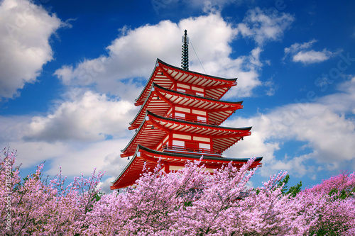 Wall mural Red pagoda and cherry blossoms in spring, Japan.