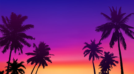 Fototapeta Black palm trees silhouettes at colorful sunset background, vector tropic banner illustration background obraz