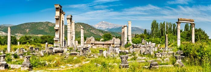 Ruins of Aphrodisias in Turkey Fototapete