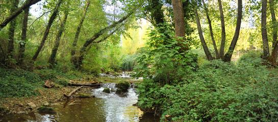 Ribera del Hueznar river in the Sierra Norte Natural Park near the village of San Nicolas del Puerto, Seville province, Spain Fototapete