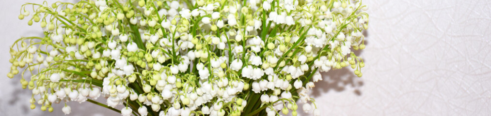 Poster de jardin Muguet de mai Banner with white lilies of the valley on a white background with selective focus and copy space. Fresh Beautiful Spring Flowers Background. White lilies of the valley with space for text.