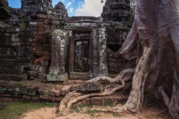 Foto auf Leinwand Kultstatte ta prohm temple in cambodia