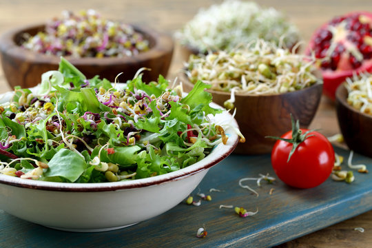 cibo vegetariano germi vari ,insalata e contorni su tavolo