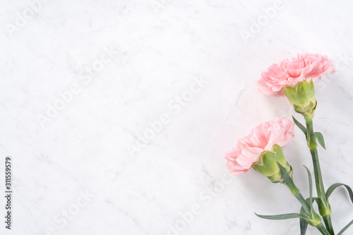 Beautiful, elegant pink carnation flower over bright white marble table background, concept of Mother's Day flower gift, top view, flat lay, overhead