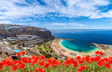 Wall Mural - Landscape with Amadores beach on Gran Canaria, Spain