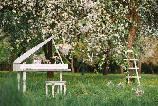 White Grand piano and white staircase with romantic decor in spring in a blossoming Apple tree garden