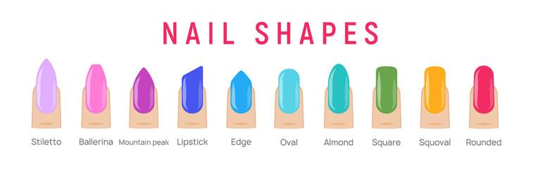 Nail shapes manicure vector art. Fingernail shape french form design fashion salon