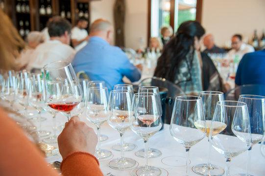 Wine degustaion