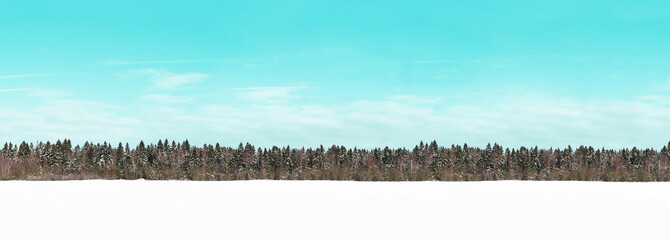Zelfklevend Fotobehang Turkoois Winter beautiful landscape with trees covered with snow. Panoramic view snow-covered field and coniferous forest