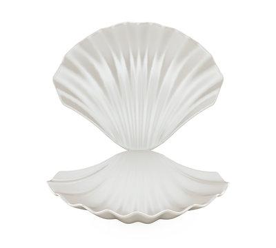 Empty Open Seashell Isolated