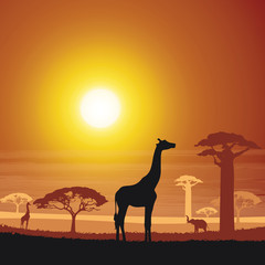 Africa land in the sunset silhouette cartoon vector illustration