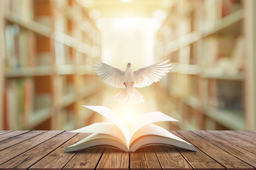Wall Mural - White pigeons fly out of books that are flicked by the wind in beautiful light on blur Library background.Education freedom concept and international day of peace