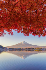 Photo sur Toile Rouge mauve Mountain Fuji with red maple leaves or fall foliage in colorful autumn season near Fujikawaguchiko, Yamanashi. Five lakes. Trees in Japan with blue sky. Nature landscape background