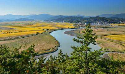 Foto op Canvas Meloen Suncheon bay natural reserve, South Korea
