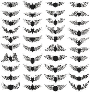 Set of emblems with wings. Design element for logo, label, emblem, sign, badge. Vector illustration