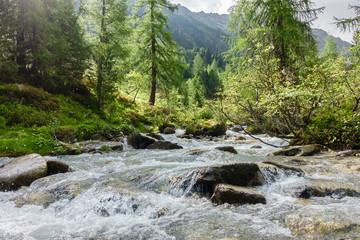 Fototapete - Gebrigsbach in einer Naturlandschaft im Zillertal