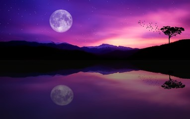 Foto auf Leinwand Violett full moon over the sea