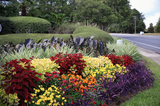 Beautiful floral arrangement/gardens located in South Georgia and North Florida