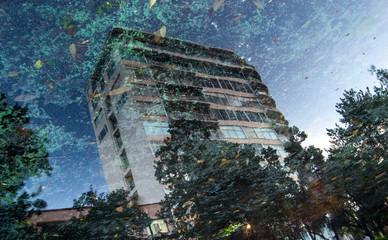 reflejo en agua de edificio en parque de la ciudad