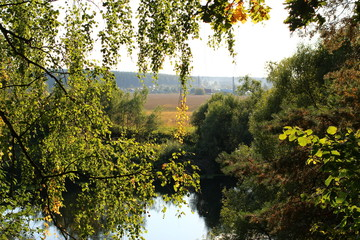 View from behind branches of a tree on a landscape with a river and a field