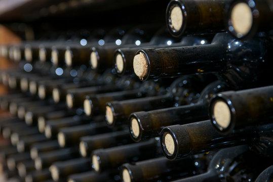 dusty wine bottles on a wooden shelf in a wine cellar