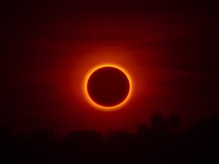 Foto auf AluDibond Braun Annular Solar Eclipse of the Sun