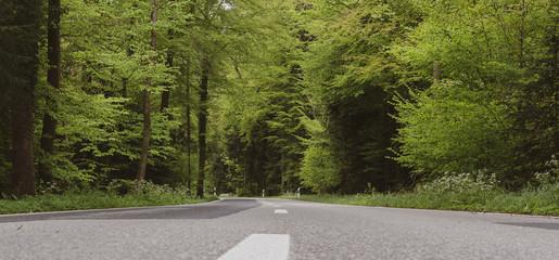 Fototapeta Hauptstrasse duch den Wald - Panorama Sicherheit auf der Strasse obraz