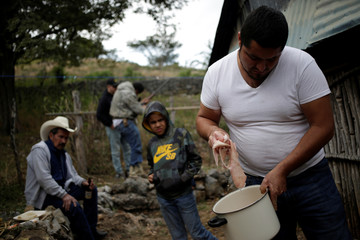 Members of the Ramirez family cook pork during a family meeting at their farm in Jalpan de Serra