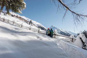 Fototapete - zwei Schneeschuhwanderer schauen in die verschneiten Berge im Zillertal