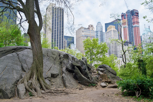 Rock View Central Park