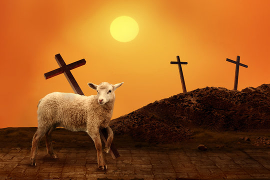 Lamb of God. The atoning sacrifice of Jesus Christ