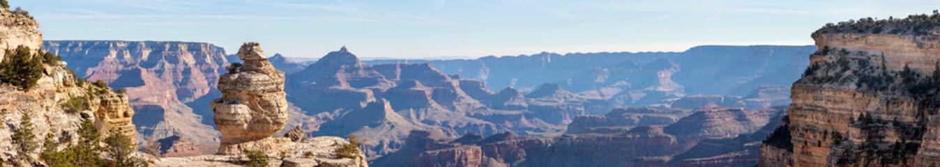 Grand Canyon Donald Duck Rock Wall mural