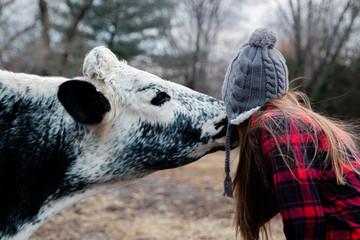 cow licks girls face