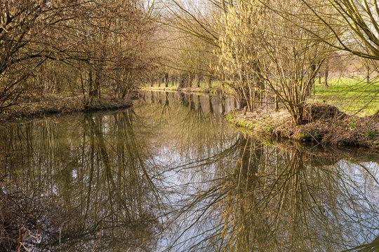 riverside in winter