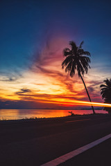 Wall Mural - Silhouette coconut palm trees on beach at sunset. Vintage tone.