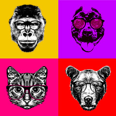 Animal head in eyeglasses colorful illustration, digital art
