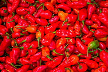 chilli red texture for background