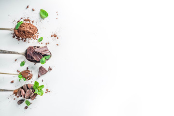 Different conditions of cocoa. Various cocoa - beans, beans, ground, crushed cocoa powder, chocolate paste, chocolate pieces and hot chocolate in a cup. In small bowls, white background above