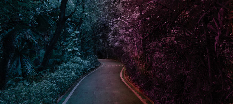Mysterious park walk path in red and bue tone