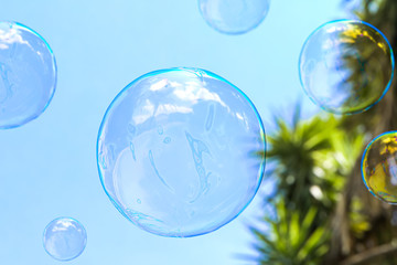 Soap Bubble With Light Blue Sky on Background. Concept Of Easiness, lightness And Aeriality. 3d rendering.