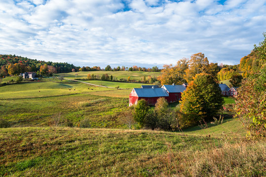 Farm with a traditional red wooden barn in an autumnal rural landscape at sunrise