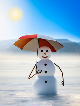 funny snowman has climate change insurance