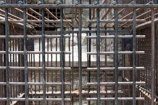 Bars of cage formerly for holding large animals
