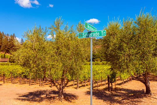 Silverado Trail Road Sign in Napa Valley, California, USA. It is the main road along which many wineries and vineyards in Napa Valley are located.