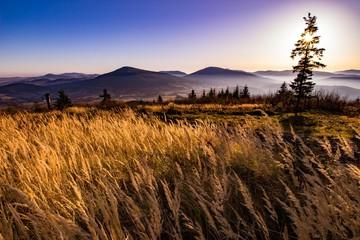 Papiers peints Marron chocolat Bajkowy krajobraz Beskidu Wyspowego, uchwycony późną jesienią o poranku.